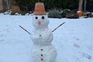 sněhulák1